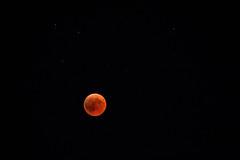 Blood Moon (on Explore 29.07.18) (raffaella.rinaldi) Tags: eclipse moon blood red astronomy astrophotography night sky stars blutmond