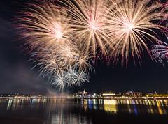 Feuerwerk (Schlaer) Tags: feuerwerk mainz sommerlichter mainzkastel firework rhein wasser nacht light