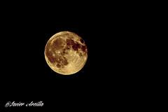 Luna llena.. (Javier Arcilla) Tags: moon luna llena amarillo astros astronomia cielo noche pentax pentaxk70 k70 sigma ponferrada castillayleon españa elbierzo leon