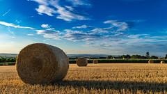 2018-Landschaft-und-Natur003 (Metis-Foto) Tags: germany hessen kirberg kornfeld landwirtschaft sommer strohballen agriculture cornfield farming strawbale summer