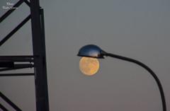 Focus in the  moon (Peideluo) Tags: moon luna farola foco atardecer calle street minimalist abstracciones
