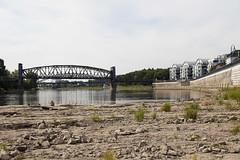 Magdeburg an der Elbe (Helmut44) Tags: deutschland germany magdeburg mitteldeutschland elbestadt elbe elbufer domfelsen hubbrücke ufer shorc fluss river riverbank haus gebäude bridge brücke building geröll