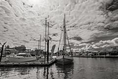 Victoria (Northside-Images) Tags: victoria vancouverisland britishcolumbia canada monochrome leicacl