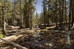 Serene (NormFox) Tags: california creek forest landscape mountains outdoors peaceful quiet river rocks serene sky stream trail trees tuolumnemedows water yosemite wawona unitedstates us