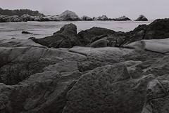 Point Lobos (bingley0522) Tags: nikkormatft3 nikkor50mmf18 xp2 autaut coastalcalifornia coastal pointlobos california