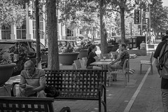 Downtown Scene (Shawn Blanchard) Tags: downtown raleigh north carolina nc weekend black white bw trees monochrome bench people building city street streetscape
