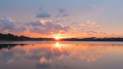 Sunset Splendour (jacysf) Tags: waterscape throughherlens reflections lake sunset dusk reflectionsonwater reservoir bedokreservoir