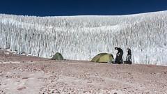 Camping below field of penitentes (Paweł Błaszak) Tags: ojos travel landscape tent salado puna atacama andes catamarca argentina mountains