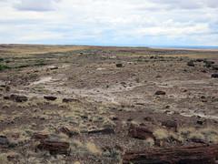 pfpd003park (invisiblecompany) Tags: 2018 travel usa arizona nationalpark petrifiedforest
