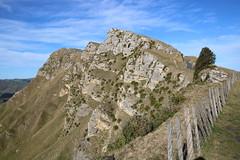 Te Mata peak (Karen Pincott) Tags: tematapeak hawkesbay hawkesbaynz hills peak fence winter blue grass cliffs newzealand