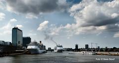 Amsterdam IJhaven, 21-7-2018 (kees.stoof) Tags: amsterdam ijhaven ij cruiseship oostelijkhavengebied easterndocklands oostelijkehandelskade