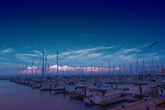 Pink Horizon (brightledge photography) Tags: chicago boat boating sail sailing water lake lakemichigan harbor clouds sky blue pinkcloud cloud horizon twilight dusk nightfall night nightscape