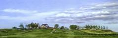 From Iceland. (Tóta. 27.12.1964.) Tags: landscape houses trees clouds sky grass iceland ísland