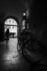 UN ALTO EN EL CAMINO (oskarRLS) Tags: parking bike cycling monocromo monochrome blancoynegro blackandwhite street calle girl bicicleta way camino copenhague