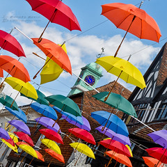 Brolly Time (RichardBeech) Tags: brolly umbrella umbrellas art artwork installation street streetart salisbury wiltshire uk britain england colours colourful rain heatwave shade parasols shops buildings outdoors city summer summertime canon canon5dmarkiii canon24105mm