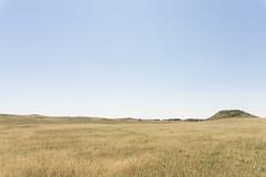 7099 (JTaylorSmith) Tags: colorado prairie grass sky gold yellow blue wide open range