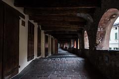 Via degli Asini, Brisighella (Adrià Páez) Tags: via degli asini brisighella del borgo emiliaromagna italia italy europe street village old wood doors
