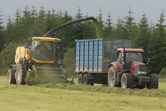 New Holland FR9080 SPFH filling a Dooley Trailer drawn by a Case IH 160 CVX Tractor (Shane Casey CK25) Tags: new holland fr9080 spfh filling dooley trailer drawn case ih 160 cvx tractor nh rathcormac newholland cnh casenewholland yellow red traktor traktori tracteur trekker trator ciągnik silage silage18 silage2018 grass grass18 grass2018 winter feed fodder county cork ireland irish farm farmer farming agri agriculture contractor field ground soil earth cows cattle work working horse power horsepower hp pull pulling cut cutting crop lifting machine machinery nikon d7200