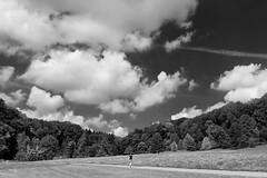 """Landscape & Woman"" (helmet13) Tags: d800e raw bw people landscape summer sunshine sky clouds forest wood trees botanicalgarden footway peaceful silence woman walk aoi peaceawards world100f"