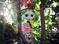 (Linayum) Tags: lagoonablue lagoona mh monster monsterhigh mattel doll dolls muñeca muñecas toys toy juguetes juguete garden linayum