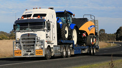 GUNN ~ Kenworth & Tractors (2/2) (Jungle Jack Movements (ferroequinologist)) Tags: gunn freight kenworth melbourne ettamogah albury hume highway wagga moonee ponds tractor ih international harvester case new holland big bale baler agriculture agquip nsw south wales hp horsepower rig haul haulage cabover trucker drive transport carry delivery bulk lorry hgv wagon road nose semi trailer deliver cargo interstate articulated vehicle load freighter ship move roll motor engine power teamster truck prime mover diesel injected driver cab cabin loud rumble beast wheel exhaust grunt farm