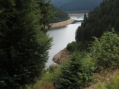 Leibis Talsperre (germancute) Tags: outdoor nature thuringia thüringen landscape landschaft wald forest stausee bahn gleis