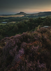 Here it comes again (mattwalkerncl) Tags: 5dmkiv benro canon colour content eos flora general greatayton heather landscape leefilters northyorkshire otherkeywords outdoors places rocks roseberrytopping summer sunrise yorkshire