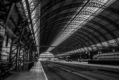 s'-Hertogenbosch train station (ericbeaume) Tags: nikon d5500 sigma 18300mm nb noirblanc noiretblanc monochrome urbain urban train trainstation rail railroad patterns netherlands travel metals ericbeaume