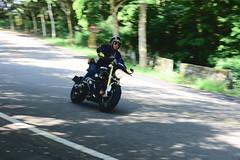 139縣道 (briandodotseng59) Tags: asia taiwan east motor road yellow sun day light shadow green black white color coth5 life nikon nikkor