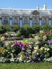 Tsarskoye Selo - Catherine Palace (fb81) Tags: russia saintpetersburg tsarskoye selo catherine palace rococo summer residence tsar blue gold flower