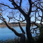 Banyoles_0090 thumbnail