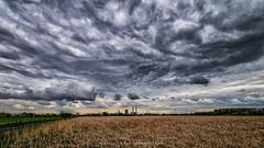 Wolkig am Niederrhein (fotos_by_toddi) Tags: fotosbytoddi voerde niederrhein nrw nordrhein westfalen natur clouds cloudy wolken bewölkt stimmung sony sonya7 sonyalpha7 sky alpha a7 alpha7