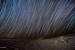 Zetetic startrails (Crosshatchs) Tags: startrails circle star night sky desert timelapse arabian lights astro longexposure shots nikon tokina d850 1116mm 28f zetetic motion starwalk razeen alquaa dubai abudhabi uae comet astroid universe heaven shower dunes sand polaris northstar bigbear bigdipper ursamajor ursaminor milkyway stargazing shootingstar lightpainting