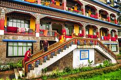 Gangtok, India (Ben Perek Photography) Tags: india indian sikkim gangtok buddhism buddha himalayas mountains mountain stupa monk temple rumtek monastery asia tibet