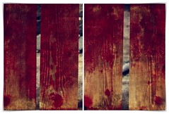 the truth from behind the fence (kazimierz.pietruszewski) Tags: abstraction abstract form composition digipaint digitalart concept graphic colorful border diptych 21