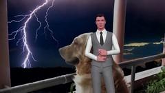 ¿Dónde Pones a Tu Perro Durante Una Tormenta Cuando No Estás En Casa? (istheonlinedogtrainer) Tags: dónde pones tu perro durante una tormenta