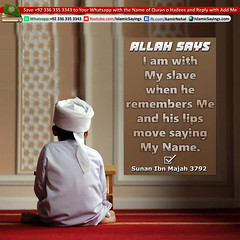 Allah-Says-iI-Am-With-My-Slave (aamirnehal) Tags: quran hadees hadith seerat prophet jesus moses book aamir nehal love peace quotes allah muhammad islam zakat hajj flower gift sin virtue punish punishment teaching brotherhood parents respect equality knowledge verse day judgement muslim majah dawud iman deen about son daughter brother sister hadithabout quranabout islamabout riba toheed namaz roza islamic sayings dua supplications invoke tooba forgive forgiveness mother father pray prayer tableegh jihad recite scholar bukhari tirmadhi