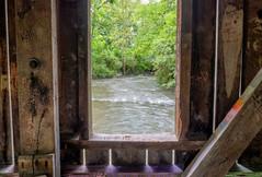 Window (Dave_Bradley) Tags: wood graffiti window river creek nature naturephotography water bridge pennsylvania usa olympus trees outdoorphotography