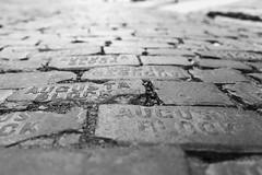 Augusta Blocks (-Der Franke-) Tags: canon eos 6d ef 24105 f4 l united states america vereinigte staaten amerika georgia savannah strase road schwarz weis black white sw bw ga depth field dof