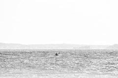 lonely fisherman (sami kuosmanen) Tags: järvi lake man mies people nature suomi finland taivas summer sky creative kouvola kesä fishing