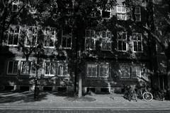 light&shadow@Bremen, Germany (Amselchen) Tags: winows bike bicycle trees bicycles lightandshadow light shadow bnw blackandwhite season summer travel trip bremen germany fujifilm fujinon xt2 fujifilmxt2 xf1855mmf284