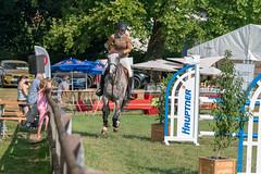 A9908793_s (AndiP66) Tags: springen langenthal 2018 5august2018 august pferd horse schweiz switzerland kantonbern cantonberne concours wettbewerb horsejumping equestrian sports springreiten pferdespringen pferdesport sport sony alpha sonyalpha 99markii 99ii 99m2 a99ii ilca99m2 slta99ii sony70400mm f456 sony70400mmf456gssmii sal70400g2 amount andreaspeters