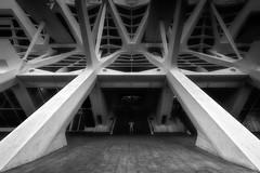Cité des Arts et des Sciences (Stéphane Sélo Photographies) Tags: bw blackandwhite citédesartsetdessciences nb pentax ricoh sigma1020f456 valence architecture espagne k3ii noiretblanc spain valencia