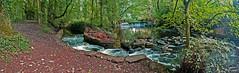 River Yarrow Weir and Goit or Leat (wontolla1 (Septuagenarian)) Tags: river yarrow lancashire chorley valley weir leet mill race walk walking hike hiking wednesdaywalk footpath row