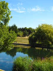 Trees, Water and Reflections, Erias park, Colwyn Bay, North Wales (uk_dreamer) Tags: nature natur trees tree water reflections reflection summer sunshine green wet reflected wales welsh cymru conwy park pond lake