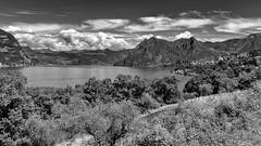 Su Monte Isola (drugodragodiego) Tags: monteisola lagodiseo provinciadibrescia lombardia italy landscape panorama paesaggio blackandwhite blackwhite bw biancoenero pentax pentaxk1 k1 pentaxdfa2470mmf28 hdpentaxdfa2470mmf28edsdmwr