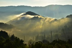 DSC_4506 (mélanie mathevon (mystery)) Tags: ardeche paysage brume brouillard matin montagnes arbres soleil bonheur nature nikon