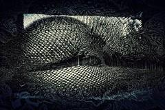 Sirena // #abstract #abstractart #glitchartistscollective #glitchart #glitch #datamoshing #modernart #rmxbyd #contemporaryart #digitalartsociety #digitalarts #digitalartwork #digitalartist #digitalart #goth #model #alternative #alternativegirl #altmodel # (dreamside.xiii) Tags: glitch visual art rmxbyd contemporary modern cyberpunk dark ig feed aesthetic vaporwave grunge model alt abstract surreal futurist retro french france