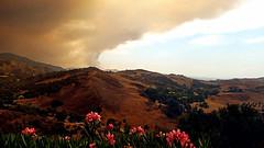 Holy Fire 9/9/2018 (EmperorNorton47) Tags: portolahills california photo digital summer mountains clevelandnationalforest smoke smokecloud clouds plume oleader pinkoleander gloom holyfire