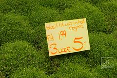 DSC00465_DxO (Kallu Medeiros) Tags: kallumedeiros purmerend nex5 autochinon55mm114 5514 auto chinon bloemen flowers flôres flor green groen verde holland noordholland holanda nederland sony